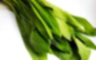 shutterstock_605530166-250x157.jpg