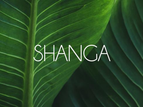 Shanga Print and Packaging