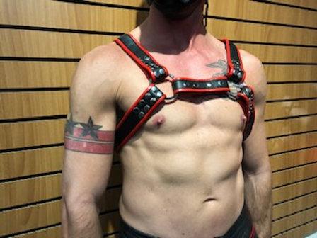 Ryder Gear Club Harness - Red
