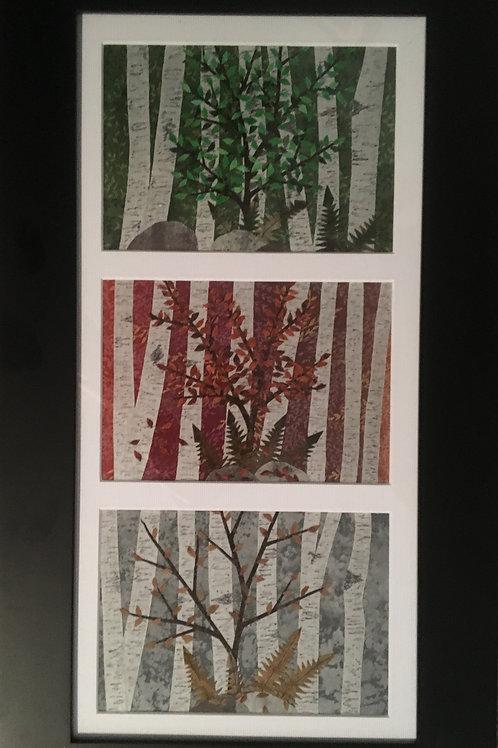 Birches (3-Season)