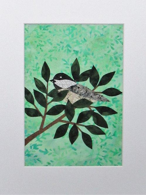 Chickadee (Spring)
