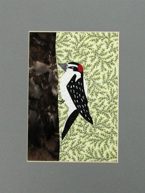 Woodpecker (Downy)