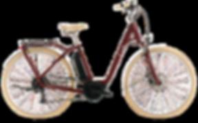 Ella ride 500 - 2519_edited.png