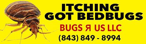 LAC board Bugs R Us.jpg