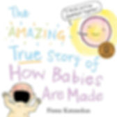how babies are made by fiona katauskas doula madison, wi