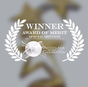 "BEST SOUNDTRACK AWARD FOR ""TERRAFORMA"""