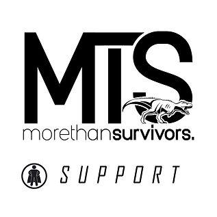 Supportt.jpg