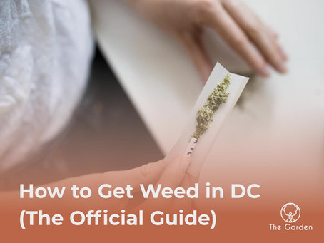 How to Get Weed in DC (THE Official 2021 Guide)