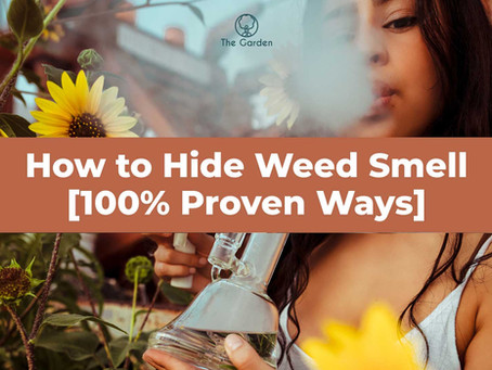 How to Hide Weed Smell [100% Proven Ways]