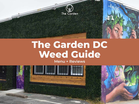 The Garden DC Weed Guide (Menu + Reviews)
