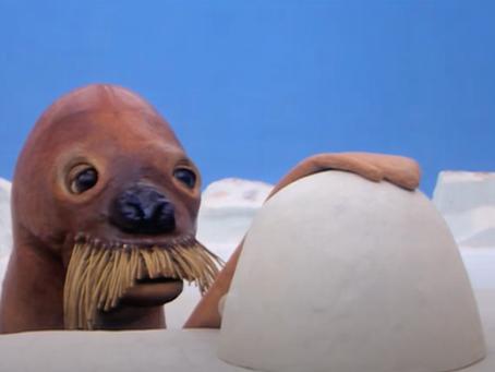 奇怪的知識增加了! 10個關於Pingu冷知識
