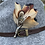 Thumbnail: Modèle faisan commun