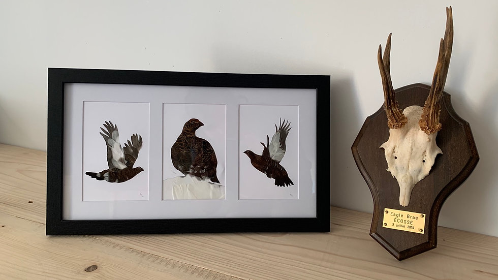 « The Famous Grouse » 23x40