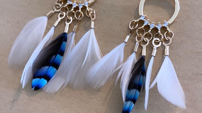 Modèle «Blue Jay»