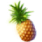 HAWN_pineapple_2x.png