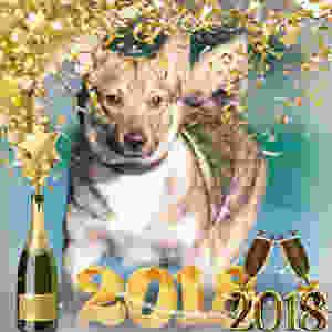 Happy New Year 2018 !!!