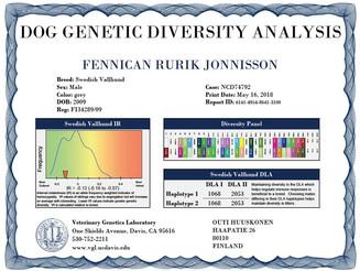 UC Davis Swedish Vallhund Diversity Test