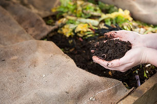 FW Compost worms hands holding.jpg