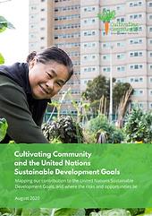 SDG REPORT.png