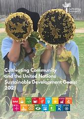 SDGs 2021 report draft 2.png