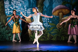 Ballet_Alice_no_País_das_Maravilhas_Kakai_Fotografia_185_copy