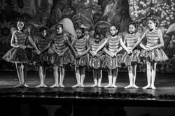 Ballet_Alice_no_País_das_Maravilhas_Kakai_Fotografia_216_copy