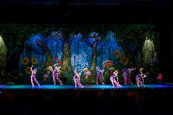 Ballet_Garden_Alice_no_País_das_Maravilhas_Kakai_Fotografia_301_copy