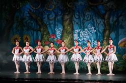 Ballet_Alice_no_País_das_Maravilhas_Kakai_Fotografia_419_copy