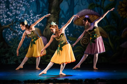 Ballet_Alice_no_País_das_Maravilhas_Kakai_Fotografia_177_copy