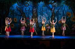 Ballet_Alice_no_País_das_Maravilhas_Kakai_Fotografia_172_copy