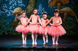 Ballet_Alice_no_País_das_Maravilhas_Kakai_Fotografia_273_copy