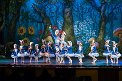Ballet_Alice_no_País_das_Maravilhas_Kakai_Fotografia_107_copy-2