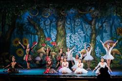 Ballet_Alice_no_País_das_Maravilhas_Kakai_Fotografia_409_copy