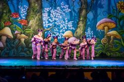 Ballet_Garden_Alice_no_País_das_Maravilhas_Kakai_Fotografia_307_copy