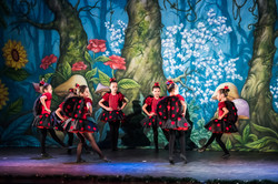 Ballet_Alice_no_País_das_Maravilhas_Kakai_Fotografia_318_copy