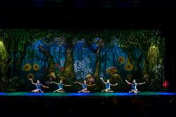 Ballet_Alice_no_País_das_Maravilhas_Kakai_Fotografia_361_copy