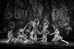 Ballet_Alice_no_País_das_Maravilhas_Kakai_Fotografia_230_copy