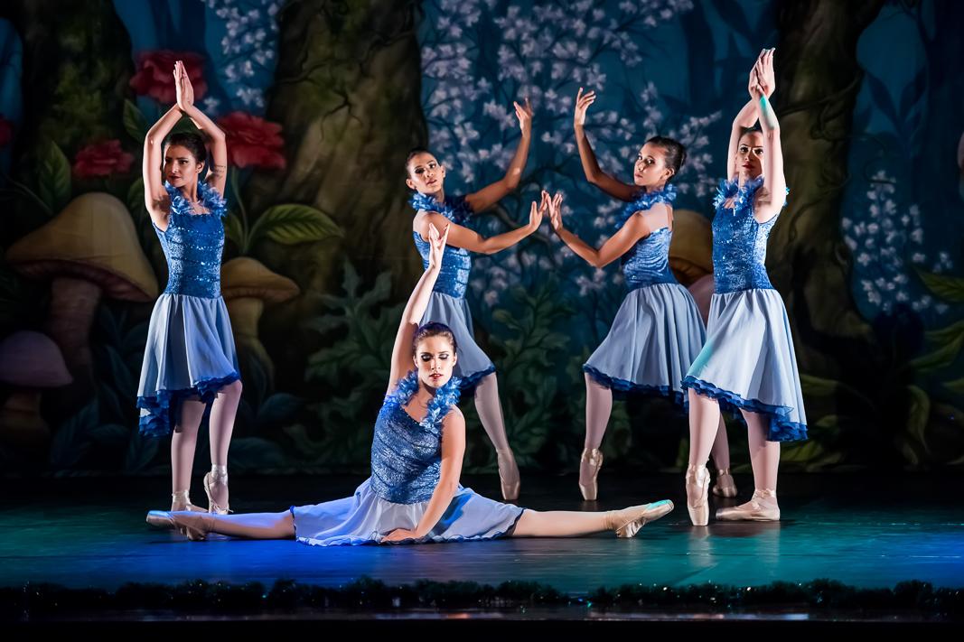 Ballet_Garden_Alice_no_País_das_Maravilhas_Kakai_Fotografia_284_copy