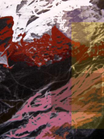Paysage no 9 ou Les algues roses