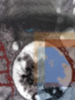 Oeil.jpg