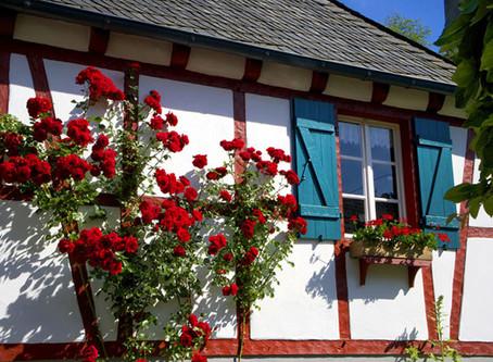 Neues Portal: Ferienhaus-Eifel.com