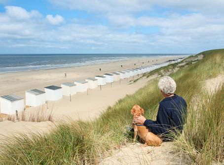 Hundestrand in Holland