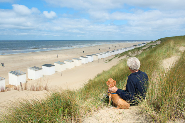 Hundestrand Holland