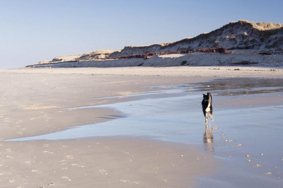 Die schönsten Strände an der Nordsee - Amrum
