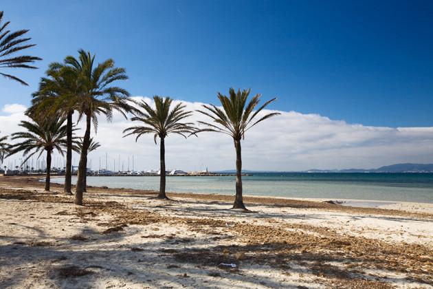 Überwintern auf Mallorca - Strand bei Arenal im Februar