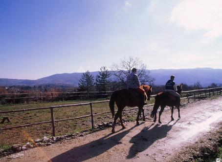 Reiten in Italien - Urlaubsglück auf dem Pferderücken