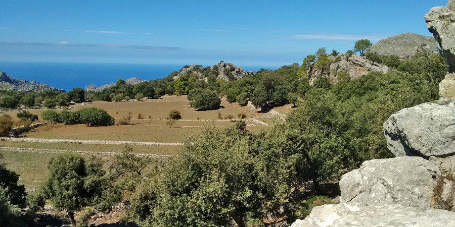 Die beliebtesten Urlaubsorte Spanien - Mallorca