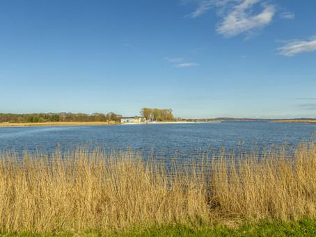Stand-up Paddling auf Usedom: Paddelvergnügen auf Deutschlands Sonneninsel