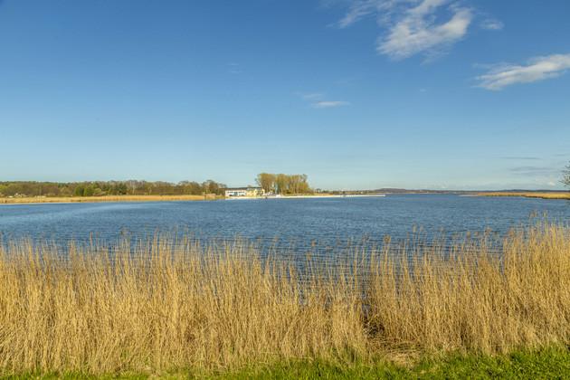 Stand-Up-Paddling Usedom - Achterwasser