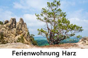 Ferienwohnung Harz